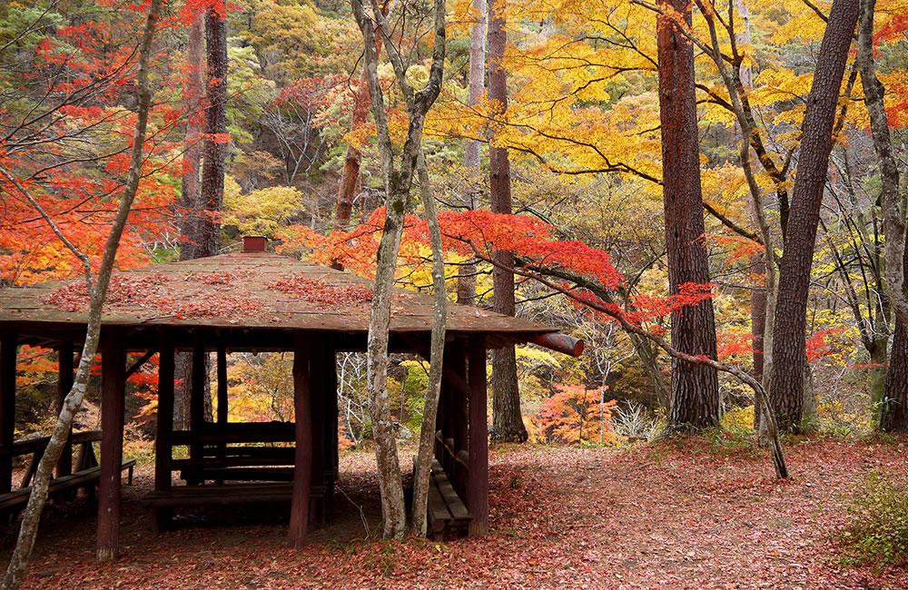 日本遺産に認定された山梨の昇仙峡の観光施設や面白いイベントをご紹介する昇仙峡観光協会