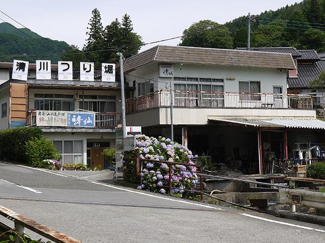 清仙養魚場・清川釣堀 写真1